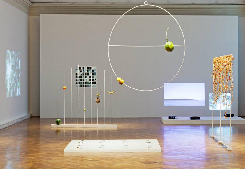 Socialist Nature, installation view at Landesgalerie, Linz